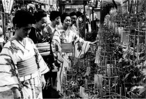 昭和40年頃の朝顔まつりの様子。